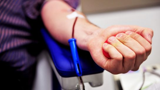 Blood donor hand