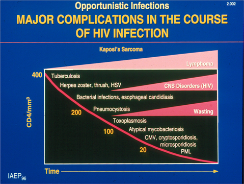 Fever in the Human Immunodeficiency Virus (HIV)Patient