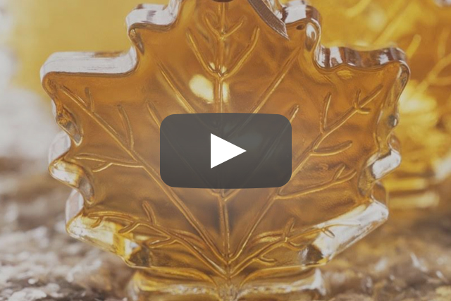 Maple Syrup Extract Antibiotics
