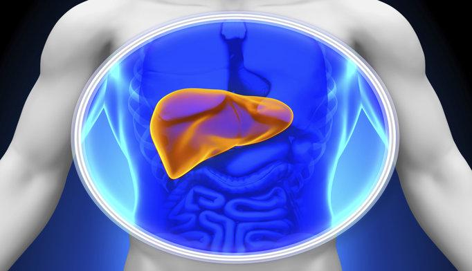 liver-scan-image_1115