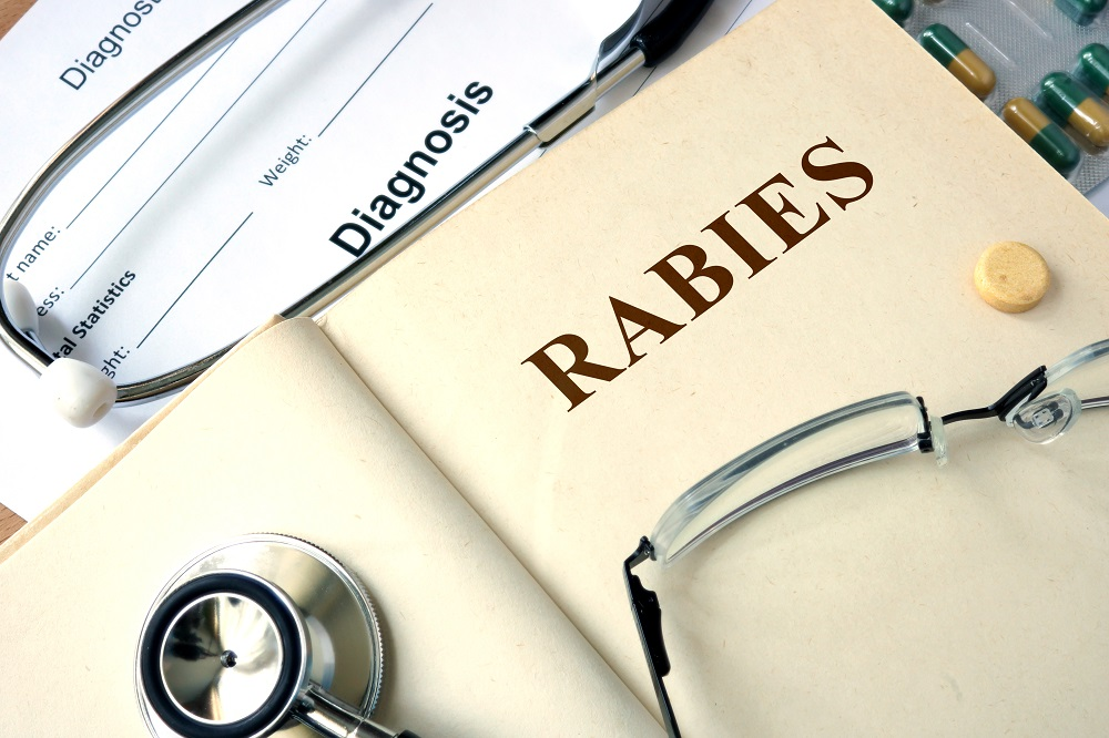 Infants and Elderly Most at Risk for Bordetella pertussis