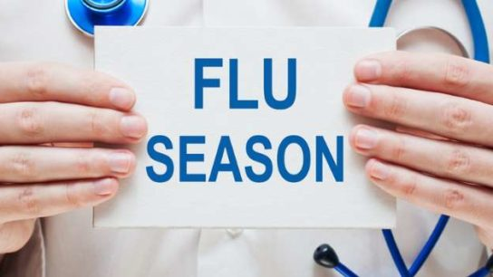 influenza season